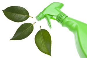 A green cleaner