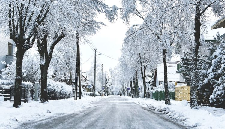 A neighborhood street with snow covering trees, sidewalks and the street